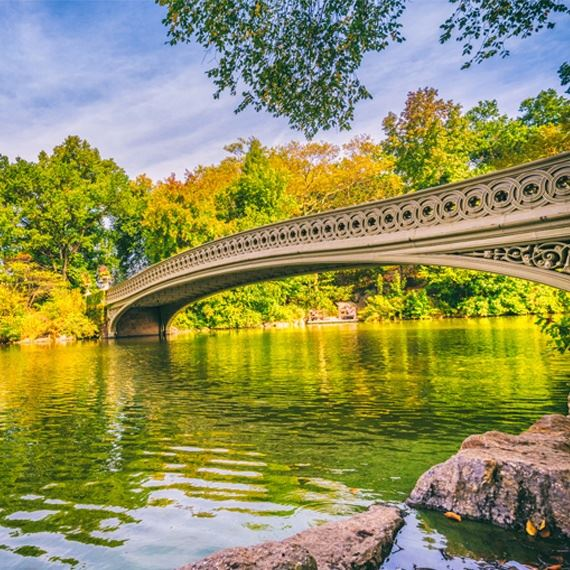 Central Park at Newyork